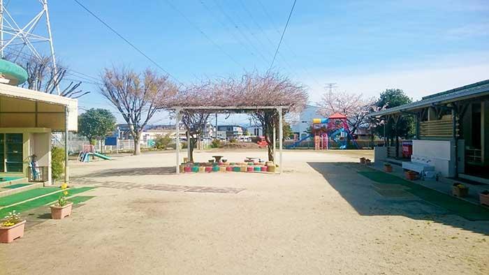 白鈴保育園 園庭